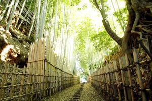 坂と暮らす街「佐倉」。旧佐倉城下の坂を歩いて一昔前にタイムスリップしてみよう♪