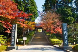 銭湯とビール待っててね♡しっかり歩こう秋の鎌倉!
