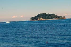 猿島探検→電車移動で休憩→横浜ディナー