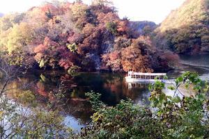 広島ぐるり!秋の紅葉めぐりの旅