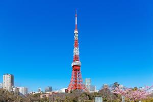 東京タワー近郊 散歩コース