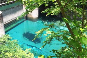 神奈川県にあるユーシンブルーを見に行こう〜御殿場・仙石原ドライブ