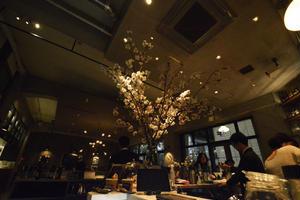 中目黒 カフェ巡り 散歩