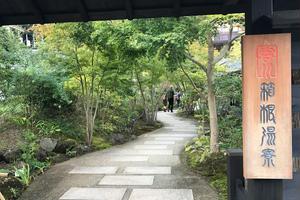 【大人のデート】小田原・箱根で鰻食べて温泉入って疲労回復な休日♨️