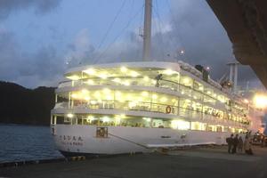 最高の夜景を船上から 大島1泊3日クルーズ旅