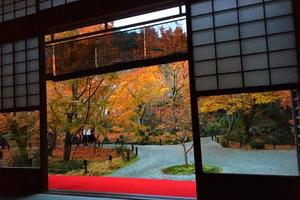 【秋の京都は裏切らない!】そうだ、京都行こう!紅葉編