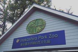 【ベビーカー】吉祥寺・井の頭公園の子連れ散歩