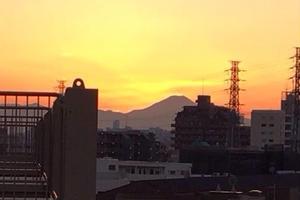 🗻おにぎり🍙でまったりピクニックしよう🍱【成増・東武練馬エリア】【板橋区】