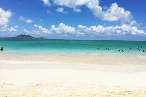 ハワイの人気スポットに行こう😎