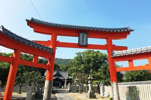 高松で赤い三ツ鳥居!とうどん旅。富士山🗻を空からお届けします✨