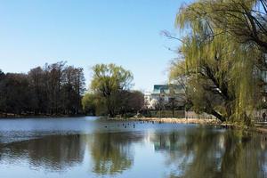 石神井公園で春デート