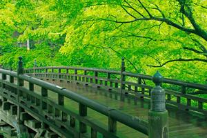 1泊2日 石川県温泉旅行
