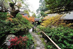 ここ東京⁈   里山歩きと温泉〜ステキ隠れ家スポットも! @あきる野・五日市