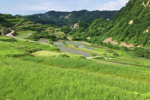 山形県大蔵村 紅葉 棚田 蕎麦 肘折温泉