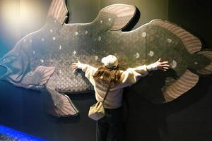 沼津漁港 へ 深海水族館