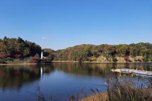 森と湖の楽園                      メッツァ、ムーミンバレーパークへ