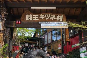 春の宮城 キツネと松島ぶらり旅