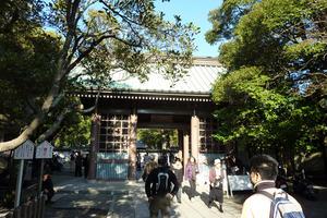 鎌倉でハイキングをして自然を感じよう(葛原岡・大仏コース)