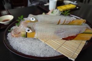 佐賀はおいしいものがたくさん。呼子のイカを食べに行こう!
