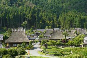 京都駅から春の美山へ直行 MIYAMOBI散策プラン④