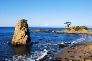 葉山の海を巡る🌊🐚