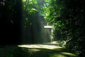 オトナでーと♡鎌倉→夜の水族館