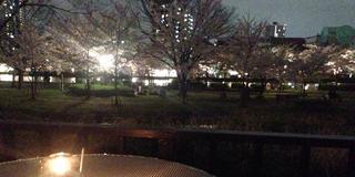 大川沿いの桜を眺めるテラスでゆったりお花見♪(+周辺おすすめグルメ)