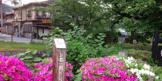 京都を歩く!(トレイルと銀閣寺周辺)