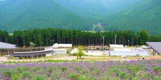 西日本最大のラベンダー畑と多可町を観光