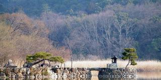 京都・一人で歩く奥嵯峨