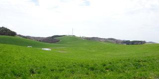 福島県南の鮫川村で楽しむ里山の風景