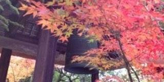 鷹峯光悦寺、源光庵を見て、紅葉の穴場鏡石通りを通り金閣寺、北野天満宮、千本釈迦堂へたどる欲張りコース