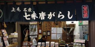 富岡製糸場だけじゃない!地元の人に教えてもらった富岡の魅力をご紹介♡