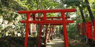 [湯河原]たぬき伝説、足湯、グルメを堪能♪ すぐ隣は静岡県なのだ!