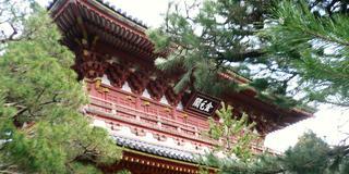 狭~く深~く♪京都大徳寺歴史探訪&周辺のお店へ