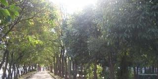 佃煮・君が代発祥のまち大阪市西淀川区。