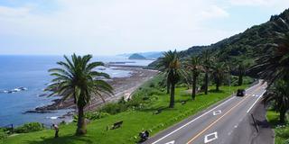 満足度220%!!五感で楽しむ日南海岸ドライブ♪