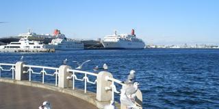 冬の休日に!❄️横浜周辺の大人なお散歩デート👫❤️