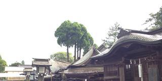 復旧から復興へ!「がんばる熊本!」の力強さを感じる応援旅
