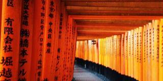 京都 心踊るカフェ☕️