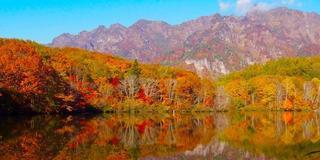 長野2泊3日の旅〜心安らぐ観光スポットと長野名物を堪能プラン〜