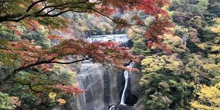 日帰りで紅葉と温泉を満喫
