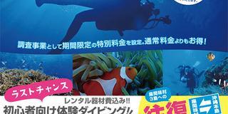 座間味ダイバーズエッグプロジェクト!   国立公園 座間味島で、体験ダイビングをしよう!〜2/28