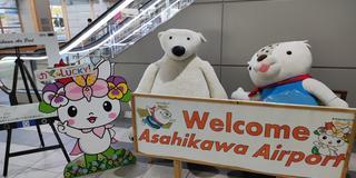 アツラエおすすめ|北海道の人気観光地をぐるっと周遊5日間