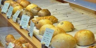 【茨城 つくば】パン好き集まれ❤️🥐🍞パンの激戦区つくばを堪能しよう✨