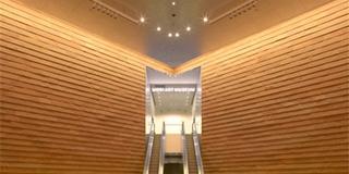 六本木 森美術館&映画館デート