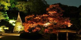 東京の庭園や山で秋を感じる