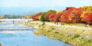 京大生おすすめ、ローカル感満載の京都