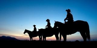家族や夫婦、カップルにオススメ!せっかく阿蘇に来たらチョコっと馬に乗ってみなっせ!☆