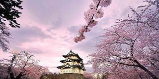 車中泊日本一周 2009-2010 (02) 青森県